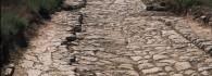 El yacimiento arqueológico. Calle VI tramos 1 y 2