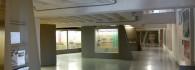 Sala 1. Vista general. De la estratigrafía a la economía.
