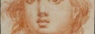 Cabeza de Ángel. Dibujo a lápiz de sanguina. Francisco de Goya y Lucientes. 1772. Inv. 51361.