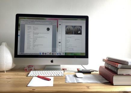Departamento de Bellas Artes revisando y cumplimentando documentación desde casa. Foto: Difusión MdZ.