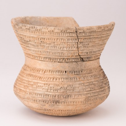 Vaso campaniforme. Cerámica. Edad del Cobre. El Campillo (Monreal de Ariza, Zaragoza). Foto: José Garrido. Museo de Zaragoza.