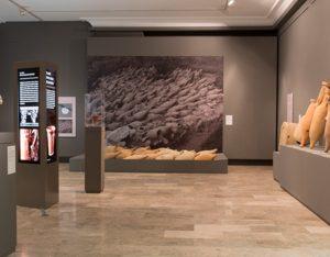 La exposición (Fot. E. Santos)